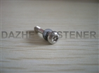 stainless steel Pan head torx recess machine screw with washer